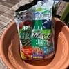 【よく聞かれる質問】家庭菜園とかに使ってる土や肥料は