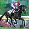 スペシャルウィークが種牡馬を引退、思い出すのは1999年有馬記念