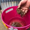 【リサイクルが便利】栽培後のパーミキュライトは再利用