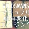 WILDSWANS ナチュラルの経年変化について ついでにOWLレビューも
