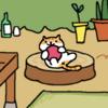近所をうろつく猫たちを集めて観察⁉「ねこあつめ」で遊んでみた