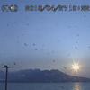 桜島では23日~27日15時までに14回の爆発的な噴火が発生!噴煙は2,500ⅿ上空まで・噴石は5合目まで飛散!!