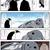 ペンギンのマンガ