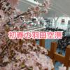 羽田空港観察記 ~Feb. 2019 (Early Spring)~