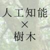 Deep Learningを用いた樹皮画像による樹種同定(Keras, CNN, 転移学習, VGG16)