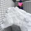 【節約】庭に雪山とかまくらを作りました!