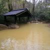 【九重町】筌ノ口温泉 新清館~緑に包まれた露天風呂で黄色に輝く温泉を独泉堪能!