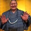 平成31年春場所 北勝富士 中日。
