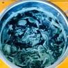 琉球藍の生葉染め🌿