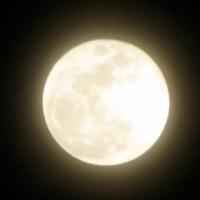 【天秤座の新月禊実り】