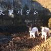 矢那川ダム散策