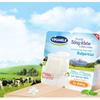 ベトナム ビナミルク(ベトナム乳業)(VNM)に新規投資した話