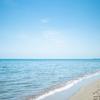 漂流物アート展も:海浜植物園