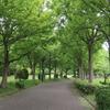 荒子川公園 2020.5.15