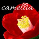 camellia の日記の時間