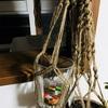 ボス猿家の生活㉙-お友達とプラントハンガーを作る