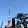 東京タワーのふもとにリス発見!芝公園には不思議がいっぱい♪