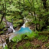 【滝】雄飛の滝。隠された絶景の滝壺を探し出せ!那須塩原の秘境スッカン沢
