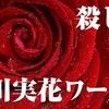 映画『Diner ダイナー』【ネタバレ感想】蜷川実花ワールド炸裂!妖艶な殺し屋たちが跳ねるアートな映画!