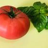 イタリア料理のシェフが教える超簡単なミニ・ホットドッグ。