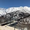 2020年3月9日、雪解けが進む岩岳スキー場。下山コースもクローズとなり、いつまでもつか?