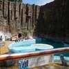 鹿児島平川動物園8ミーアキャット、ビントロング、アライグマ、ペンギン