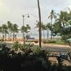 ハワイ 2016.11/30-12/7 ②