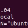 統計言語「R」をUbuntu 20.04.1 LTSにインストール