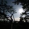 天の羽衣伝説と竹取物語のつながりを調べていたら、日本古代史のミステリーに繋がってきた気がする