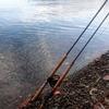 北海道 支笏湖の釣り 20201031 / 今までになく魚っけあり