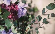 人生の節目や年中行事に花が登場するのはなぜか?