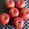 爺飯59 「リンゴは何にも言わないけれど♪」