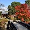 曼殊院天満宮の紅葉、見頃や色づき具合。