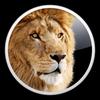 Mac OSX Lionインストール