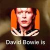 デヴィッド・ボウイは時代を先取りする。:アプリ「David Bowie is」