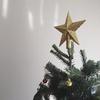 アメリカで生のもみの木、クリスマスツリーを購入!