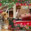 2020!!6/28 結婚記念日6周年♪ CHEZ NAKA 国立さんにディナーへ〜♪───O(≧∇≦)O────♪