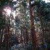 ◆4/5    金峯山~鎧ヶ峰①…スタート~中の宮