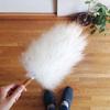 極上触感で掃除がもっと楽になる♪ミーウーリーズの羊毛ダスター