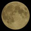 満月の夜に ・・ う~ん、何処へ