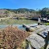 円山公園 ひょうたん池(京都府京都)