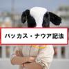 【応用情報】バッカス・ナウア記法(BNF)の問題を解く!
