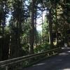 同じ路を何度も歩くのが好きだったりするのです(陣馬山〜高尾山 奥高尾縦走約19km)