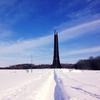 【一日一枚写真】冬の野幌森林公園 Part.2【スマホ】