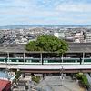 大阪ミュージアム 行って良かった総選挙!!【北河内エリア 萱島神社のくすのき】
