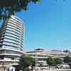 桜町再開発ビルの商業施設2階に『くまモンビレッジ』が誕生
