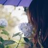 休み明けの雨・・・