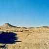 パルミラ遺跡