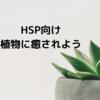 【HSP向け】植物を育ててみよう【リラックスする効果あり】