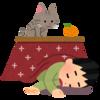 覚え書き日記 『寝正月の体現者』(2017・1/03)